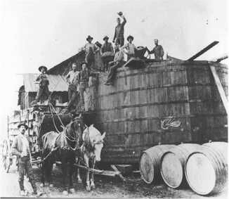 Calif Wine History 300x260 Complete Napa Valley California Wine History from Early 1800s to Today To learn more about the #NapaValley Wine Trolley and our tours click here: https://www.napavalleywinetrolley.com/