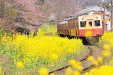 小湊鉄道 Kominato Railway