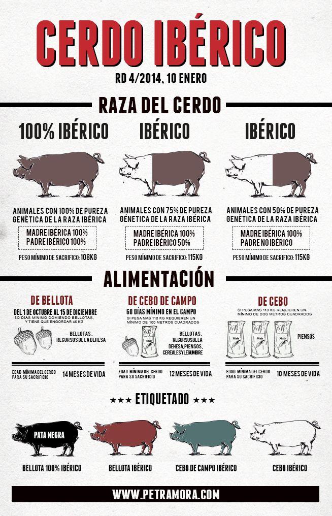 Nuestros amigos de petramora.com nos ilustran la nueva normativa del cerdo ibérico con esta infografía...