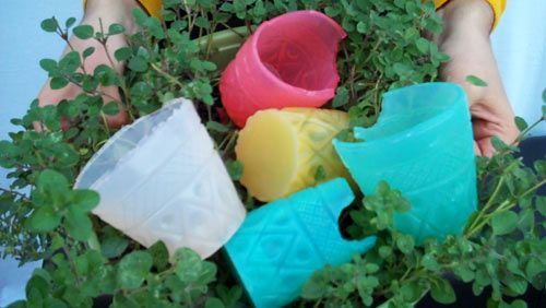 Jelloware - edible, biodegradable cups