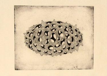 "Saatchi Art Artist Gavin Porter; Printmaking, ""Vacare"" #art"