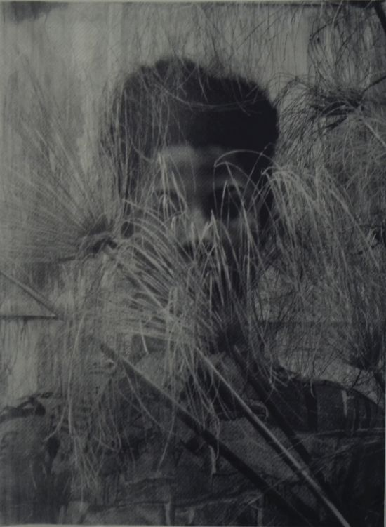 Zohra Opoku, 'Cyperus Papyrus' (2015), Screen-print on paper, 105 x 79cm, Edition of 2