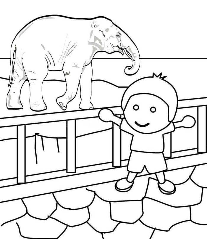 Free Zoo Coloring Pages Printable Free Coloring Sheets Zoo Animal Coloring Pages Zoo Coloring Pages Animal Coloring Pages