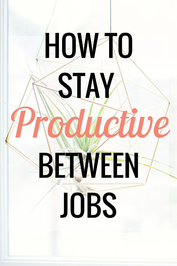 How to Stay Productive Between Jobs - Very Erin