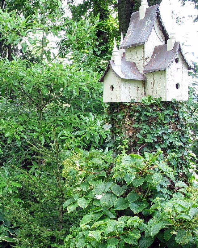 Bird house on old tree stump.