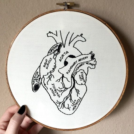 "Anatomical human heart hand embroidery hoop art. Hand stained 8"" hoop. Home decor. Anatomy."