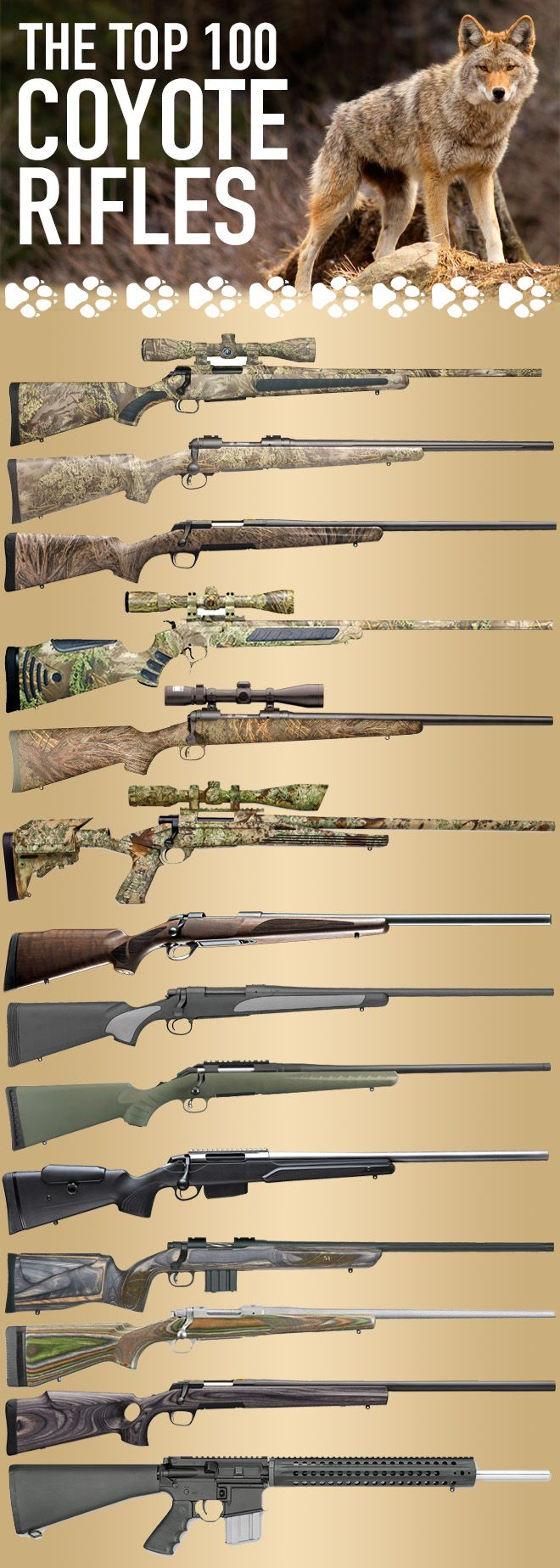Finding the best coyote gun is an impossible task. There doesn't yet exist the perfect weapon for slaying song dogs in every situation. Debates will rage on about what's the best caliber, the best loads, and of course the best way to hunt coyotes! This li