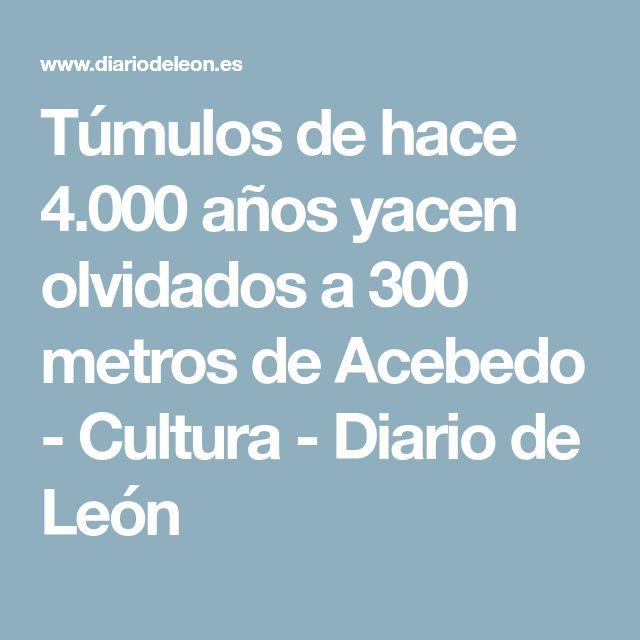 Túmulos de hace 4.000 años yacen olvidados a 300 metros de Acebedo - Cultura - Diario de León