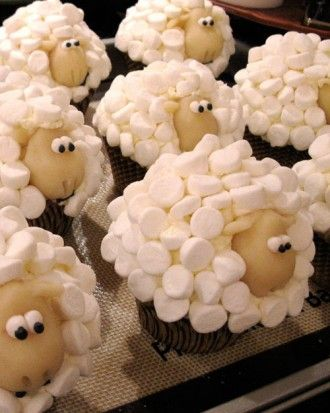Sheep Cupcakes - so cute!   The basics: frost a cupcake and use mini marshmallows to create the sheep wool, get candy eyes or use frosting for eyes and use cookies, cake balls, etc. for the head/face. You can do chocolate or vanilla faces. They may not be teddy bears but we think they are perfect for the Spring and Easter season... or anytime you need a herd of sheep cupcakes!  From all the bears at Giant Teddy - Enjoy : )  Found on: Martha Stewart