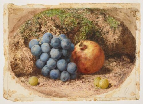 Stlll Life with Grapes and a Pomegranate' (after 1825).  Watercolour, gouache with gum arabic by William Henry Hunt (1790-1864).  Image and text courtesy Minneapolis Institute of Art.