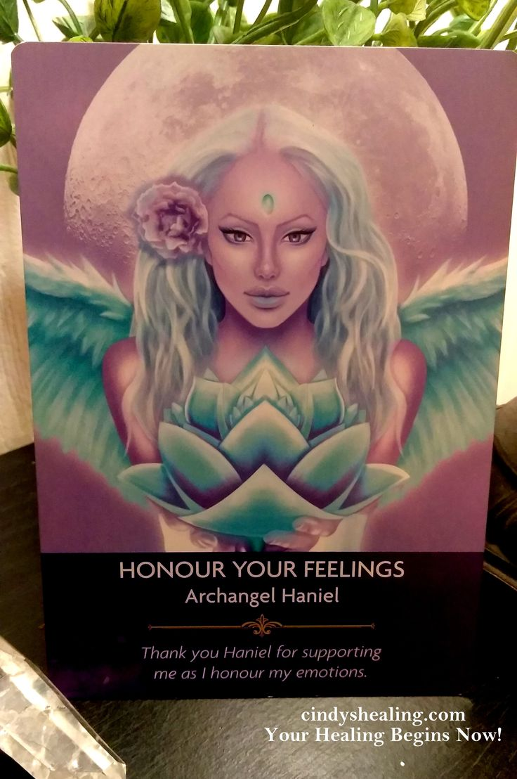 Greetings My Spiritual Brothers & Sisters.. Enjoy, & Celebrate How You Really Feel Today. God Blesses & Loves You, and so do I! xox cindyshealing.com Your Healing Begins Now. (Angel Prayers Oracle Cards By Kyle Gray)