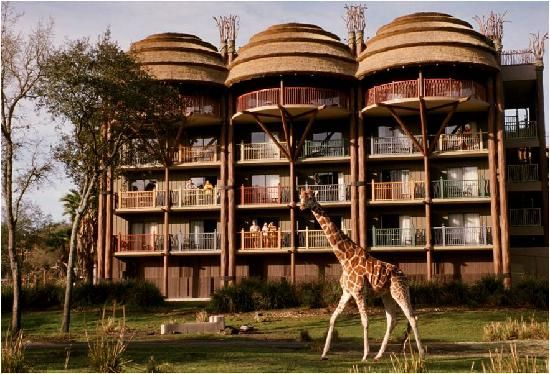 Disney's Animal Kingdom Lodge - Ratings by people who have stayed there