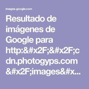 Resultado de imágenes de Google para http://cdn.photogyps.com/images/2.bp.blogspot.com/-jfj6DgvXfPw/VjrtQ1DuqmI/AAAAAAAAABU/3VuJqOfjapQ/s1600-r/SEMILLA+DE+BRASIL+RIVIDY.jpg