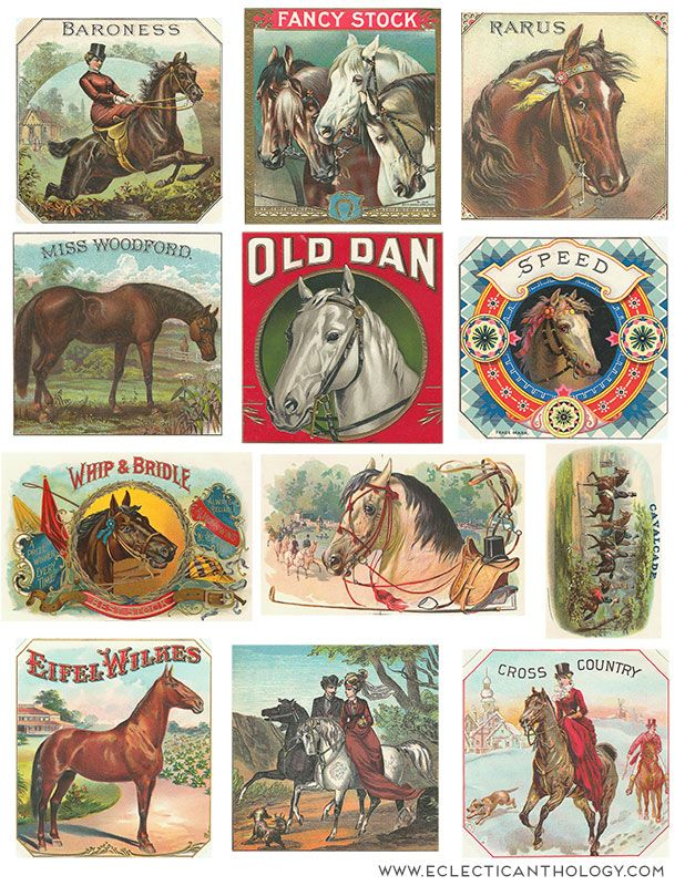 FREE Vintage Horse Cigar Labels⊱✿-✿⊰ Join 4,200 others & follow the Free Digital Scrapbook board for daily freebies. Visit GrannyEnchanted.Com for thousands of digital scrapbook freebies. ⊱✿-✿⊰