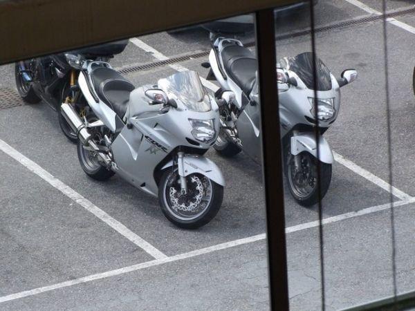 Bonzos Honda Blackbird