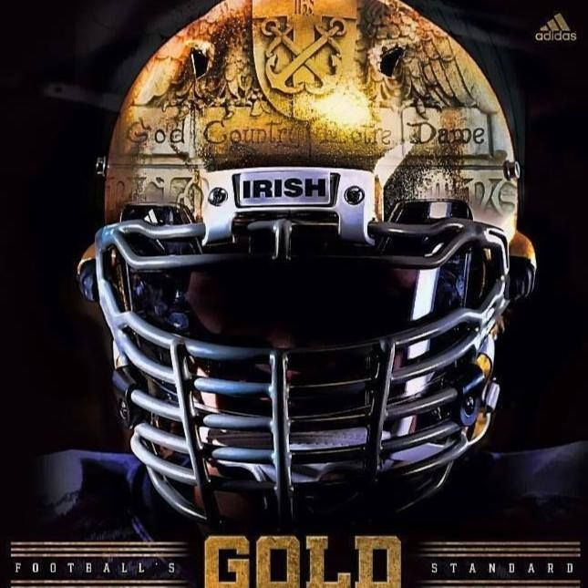 1000 images about football helmets on pinterest - Notre dame football wallpaper ...