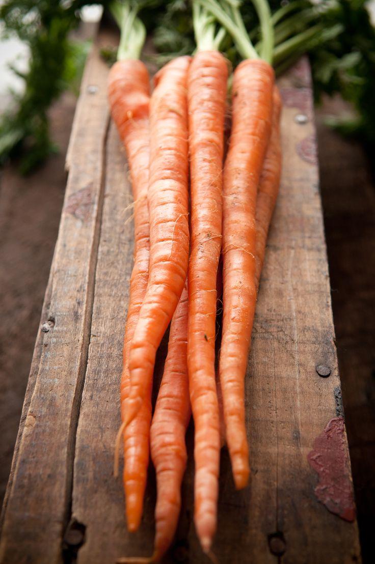 Carrots | Leek Soup - Dina Avila