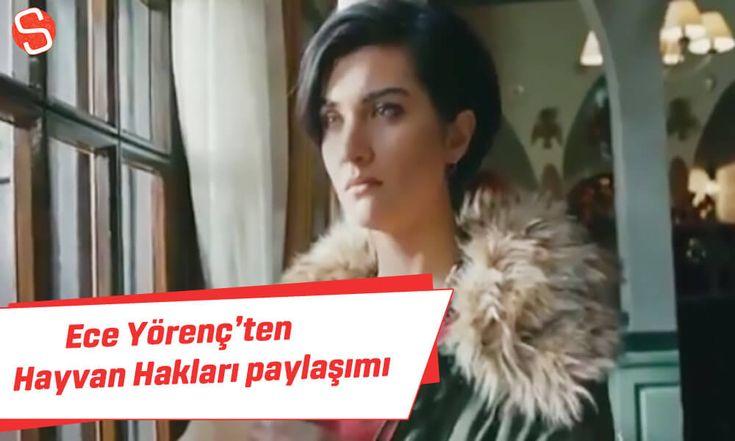 Ece Yörenç'ten 'Hayvan Hakları' paylaşımı #eceyörenç #hayvanhakları #kürk
