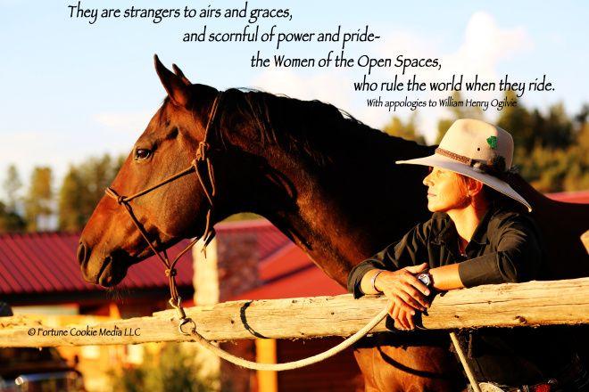 Love Horse Quotes. QuotesGram