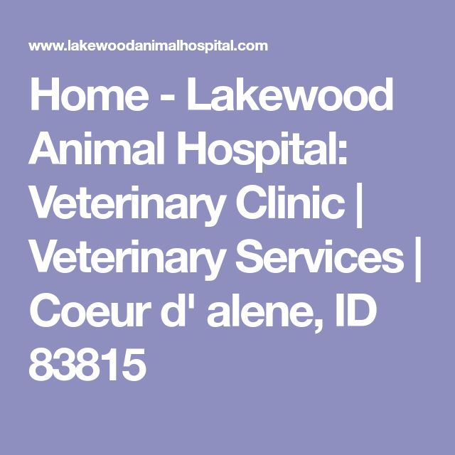 Home - Lakewood Animal Hospital: Veterinary Clinic | Veterinary Services | Coeur d' alene, ID 83815