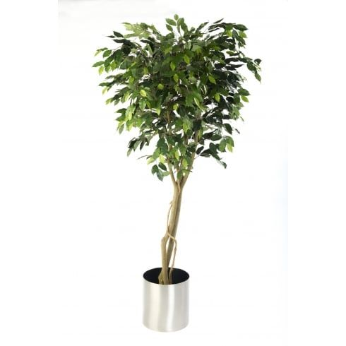 Artificial Ficus Benjamina Tree Set In A Stainless Steel Planter, Perfect  For Offices And Workplaces