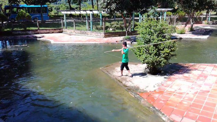 Crocodile farm - Nha Trang, Vietnam #nhatrang #vietnam #crocodile #asian