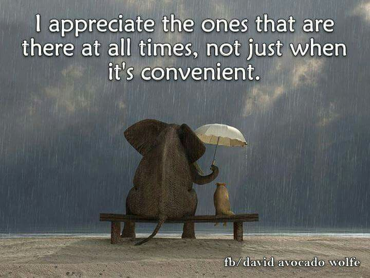 I appreciate the ones that are there at all times