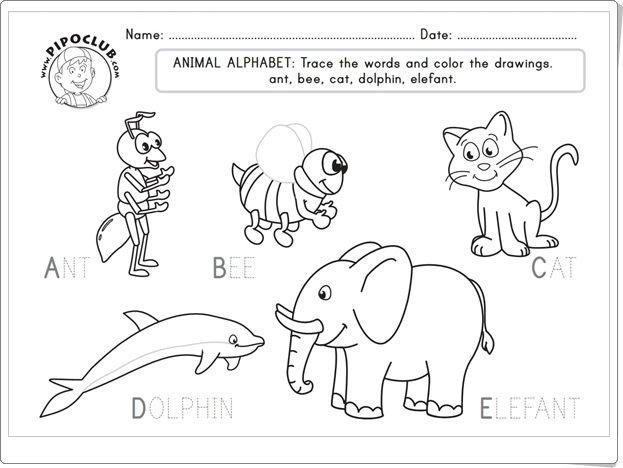 """""""Animal Alphabet"""", de pipoclub.com, es un cuadernillo para trabajar el aprendizaje del abecedario con vocabulario en inglés. Adecuado para 1º y 2º niveles de Educación Primaria."""