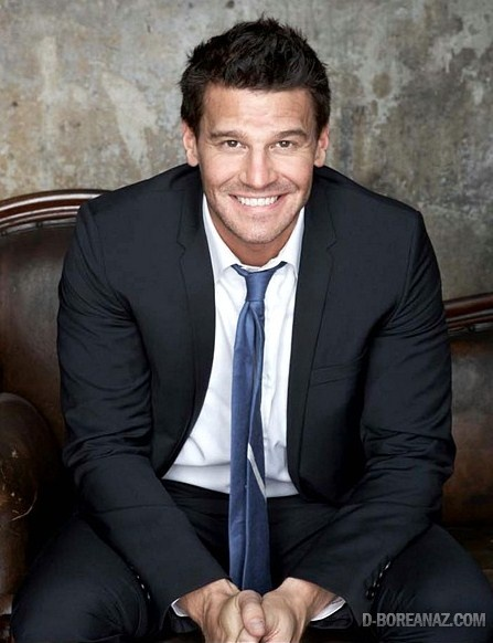 David Boreanaz: Seely Booth: i'm completely irrationally in love with a fictitious character