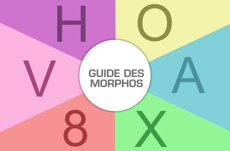 Guide Morphologie