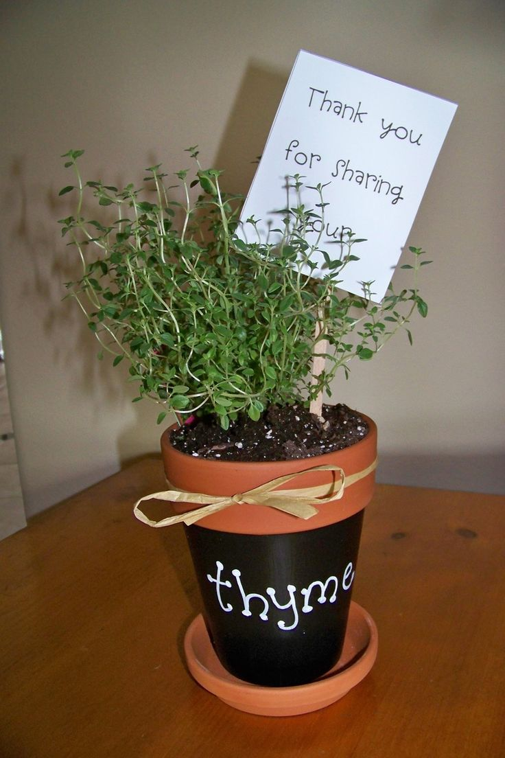 206 best volunteer recognition ideas images on pinterest birthdays gift idea for parent volunteer or teacher thank you for sharing your thyme negle Choice Image