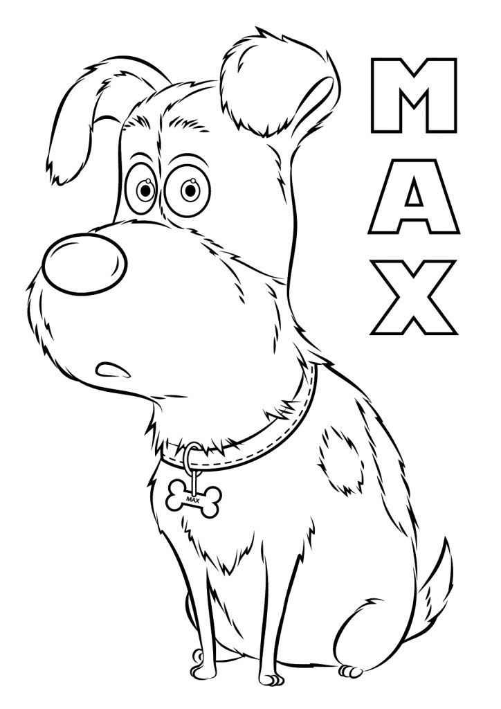 printable The Secret Life of Pets Coloring Pages  Best Coloring Pages simple – bestcolouringpages
