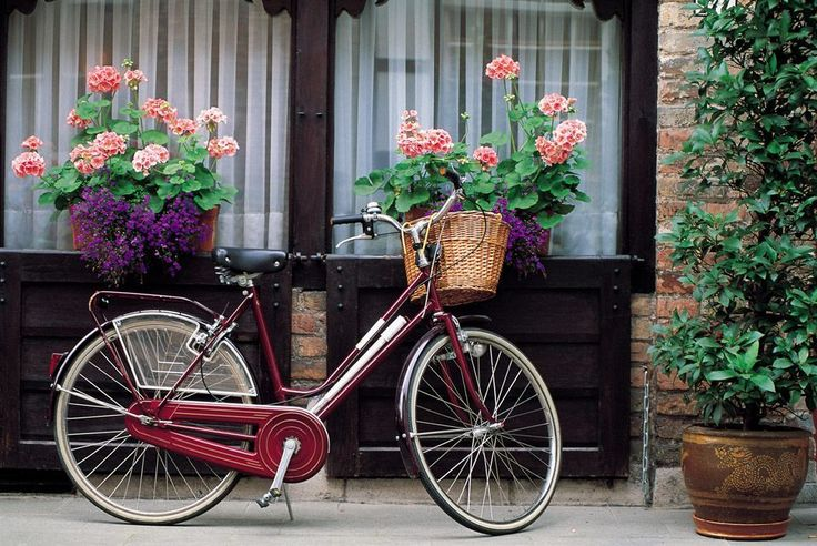 将来に備えて自転車置き場を設置すべき理由