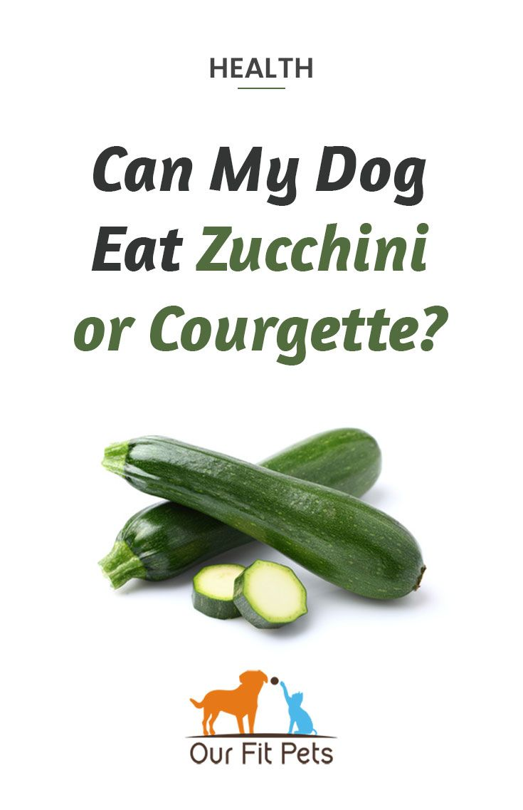 can i eat zucchini on diet