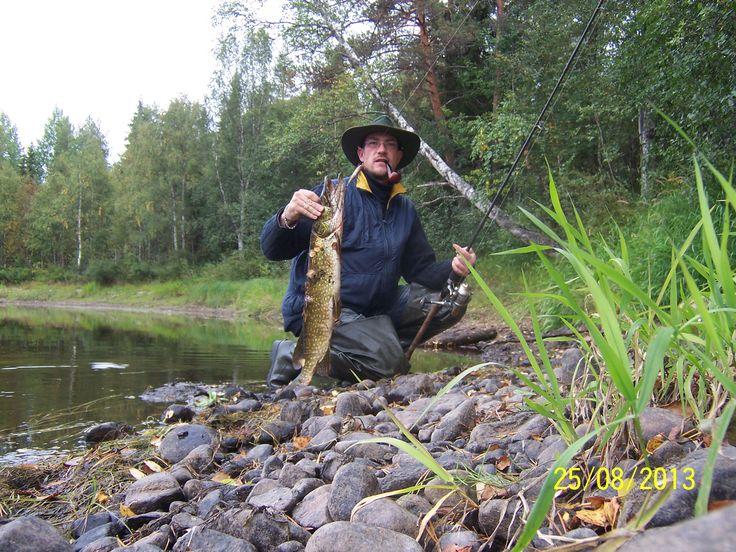 hirivpirtit lapland Finland Taivalkoski fishing  pike in Iijoki