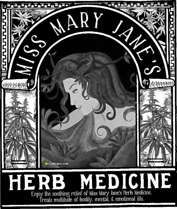 Miss Mary Jane's Herb Medicine MMJ Poster – #weedmemes