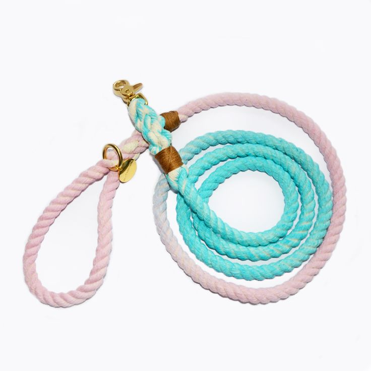 Witty&White sweet ombre blue and pink rope dog's leash.