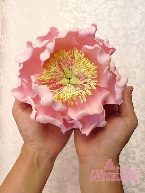 Pink sugar flower by