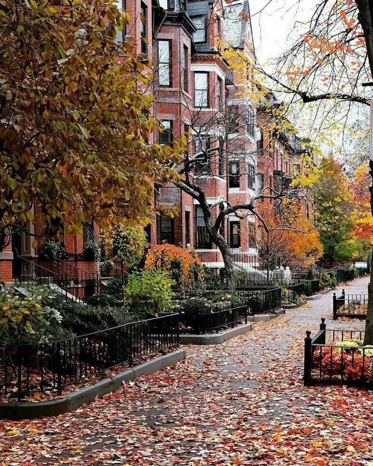 Осенняя стокгольмская аллея улица фото странная версия