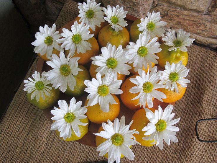 Margaridas nas laranjas
