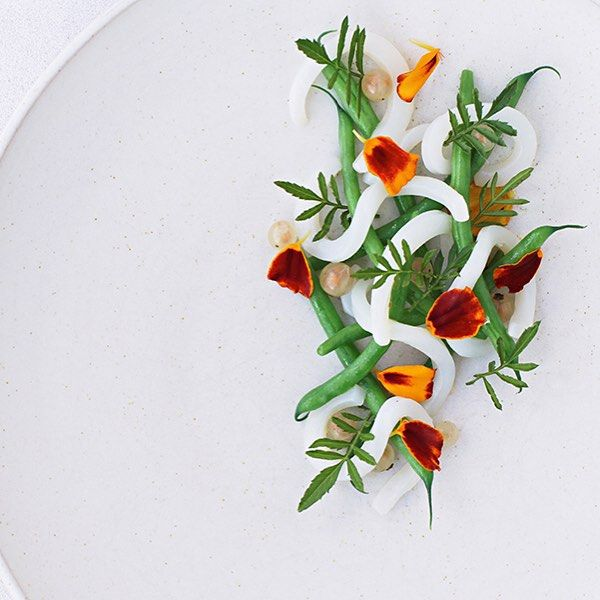 What's next for Nordic cuisine? Find out on http://theartofplating.com as Matt Orlando talks to us about the next evolution and what his favorite dish at Amass is #TheArtOfPlating Squid, beans, white currants and marigold by @amassmo : Tim Spreadbury