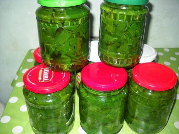 Spanac conservat | Bucatarie Traditionala Retete Culinare