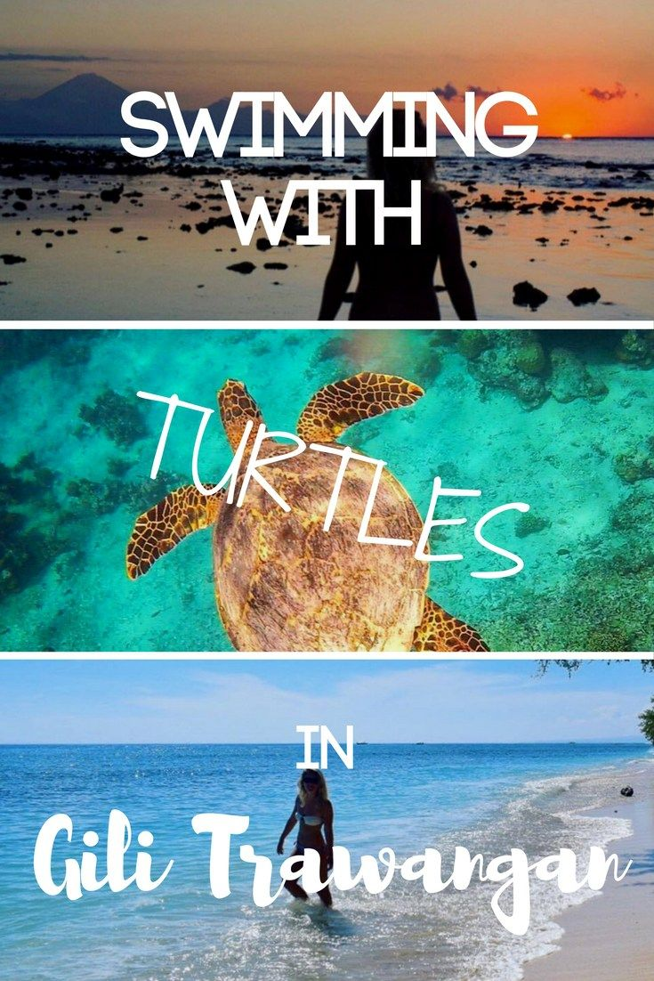 Gili Trawangan is the ultimate chill island vibes destination. We spent three days exploring and cycling around this beautiful pedestrian island, and snorkelling with turtles just off the coast from our hotel! Come discover more about this paradise!