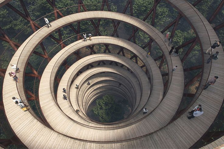 This Danish Forest Is Getting a Spiraling Treetop Walkway