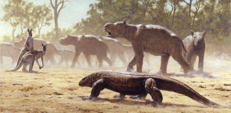 This Ancient Australian Beast Is the Only Marsupial Known to Have Made Seasonal Migrations