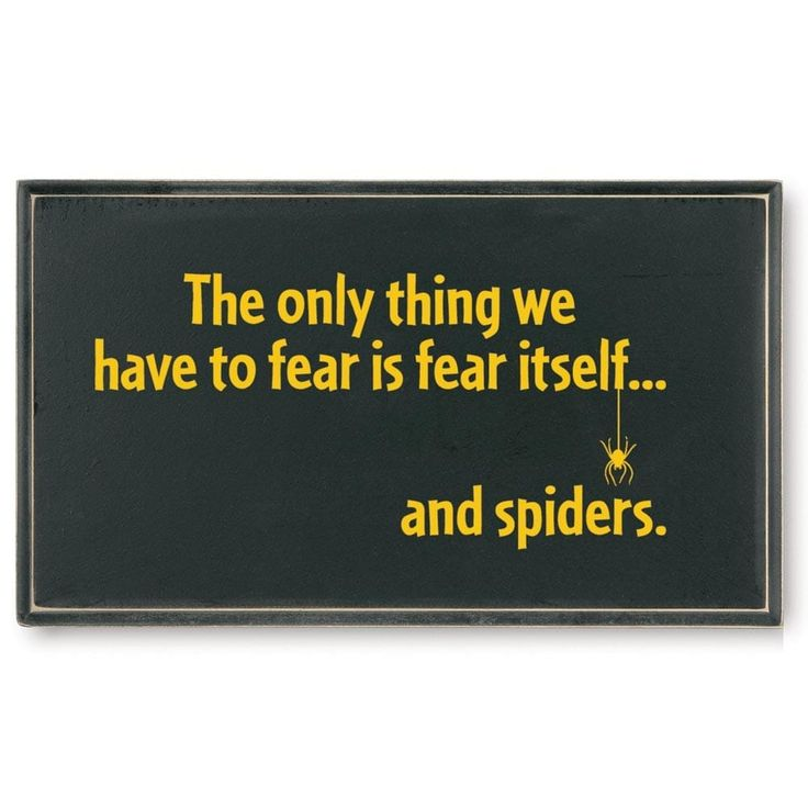 The Only Thing To Fear is Fear Itself, and Spiders - Funny Wooden Plaque, Black