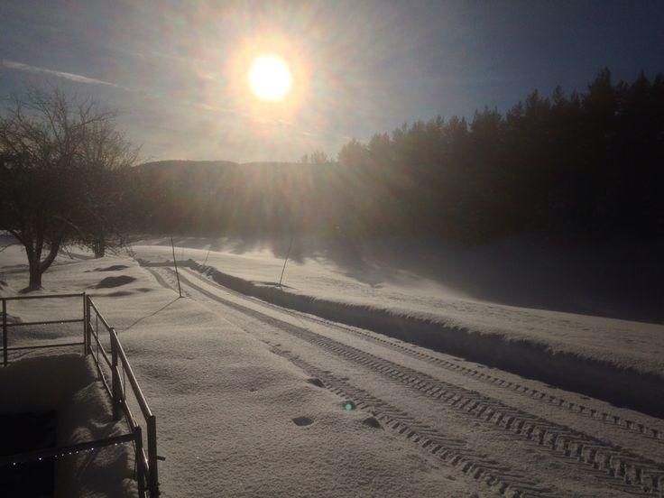Magic winter sun!
