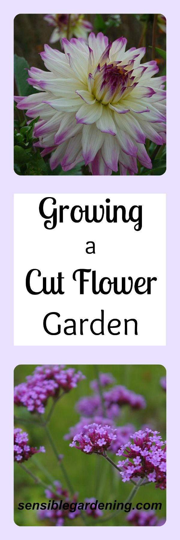 77 Best Cutting Gardens And Flower Arranging Images On Pinterest