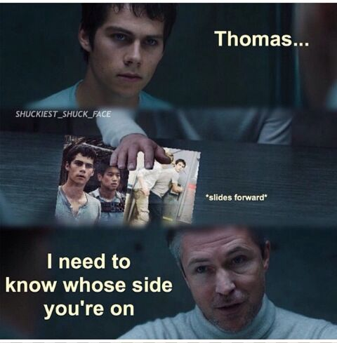 Newtmas Pictures & Memes - Which Side? | Pictures, Meme ...