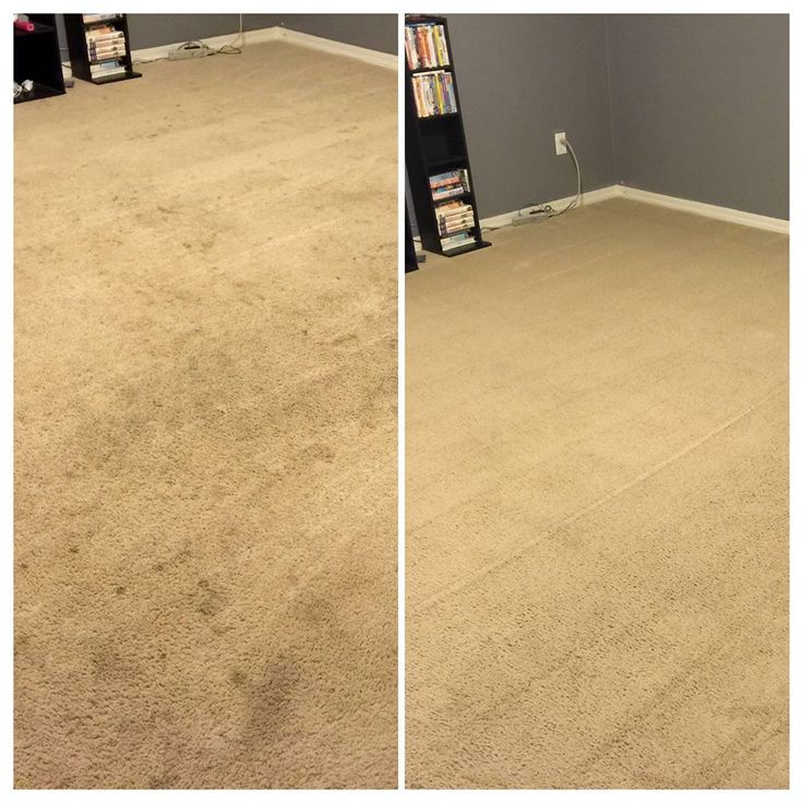 REAL RESULTS! 1/2 tsp of the Norwex Ultra Plus Laundry Detergent in a Rug Doctor...or carpet cleaner..!!! No fillers, no phosphates, no dyes, very pure and powerful!